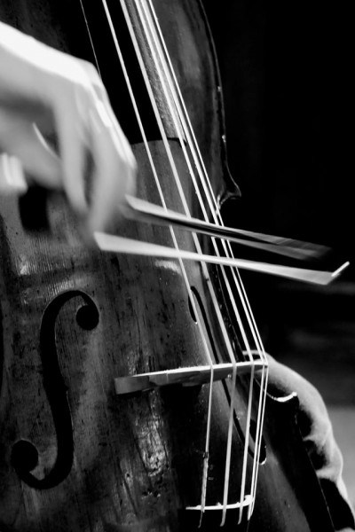 piccolo cello in action