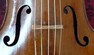 http://www.jennifermorsches.com/wp-content/uploads/piccolo-cello_sidebar.jpg
